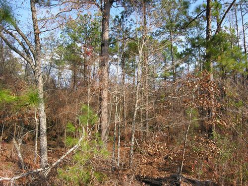 28+- Acres Wooded, Open, Creek : Mauk : Taylor County : Georgia