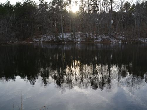 Lots Of Land With A Pond : Brookneal : Halifax County : Virginia