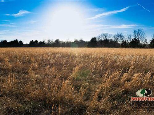 160 Ac Mixed Terrain Hunting : Fredonia : Wilson County : Kansas