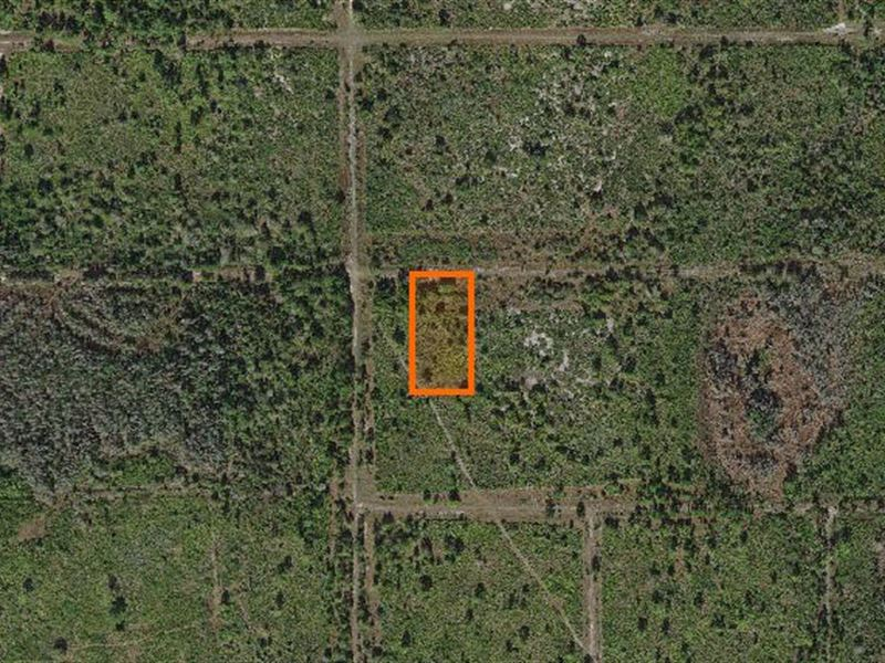 Polk County, Fl $8,000 Neg : Fort Meade : Polk County : Florida