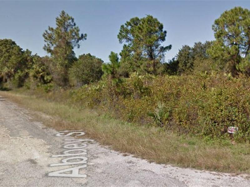 Lee County, Fl $18,000 Neg : Lehigh Acres : Lee County : Florida