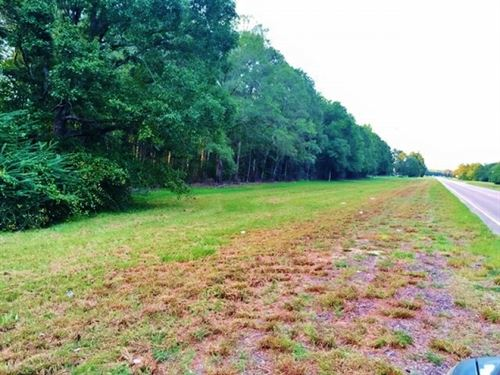 Large Acreage For Sale Near Columbi : Columbia : Marion County : Mississippi