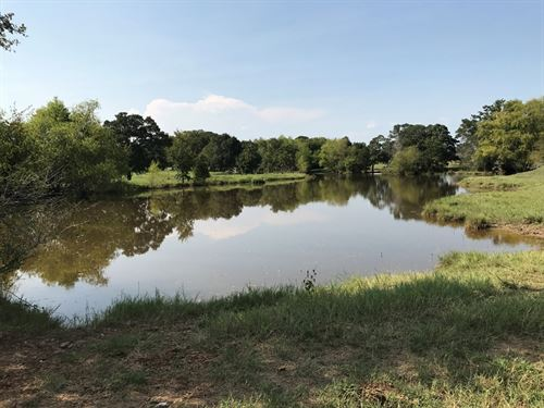Views, Surface Water, Imp Grass : Thorndale : Milam County : Texas