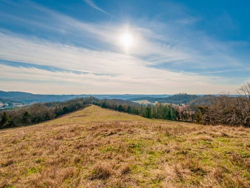 Williamson County 100 Acre Farm : College Grove : Williamson County : Tennessee