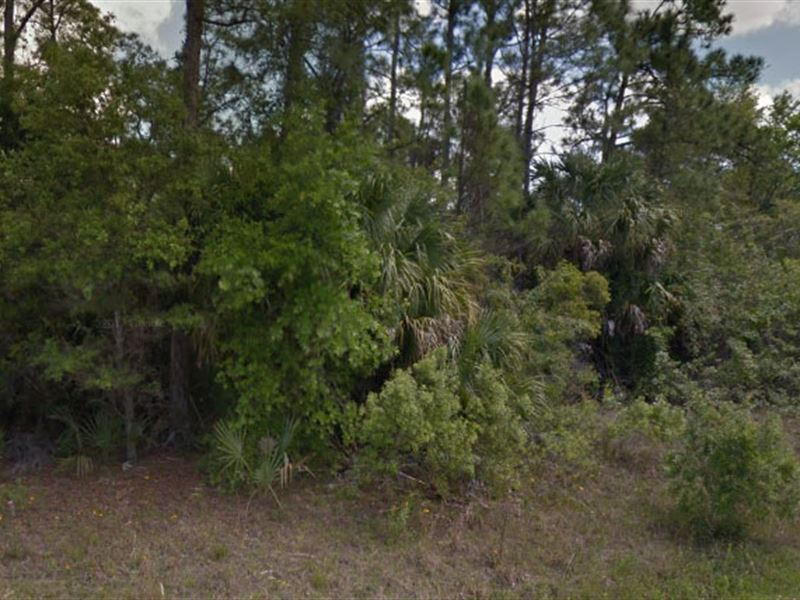 Sarasota County, Fl $25,000 Neg : North Port : Sarasota County : Florida