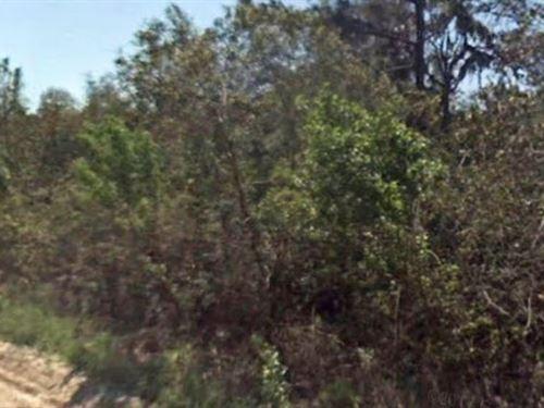 Citrus County, Fl $60,000 Neg : Crystal River : Citrus County : Florida
