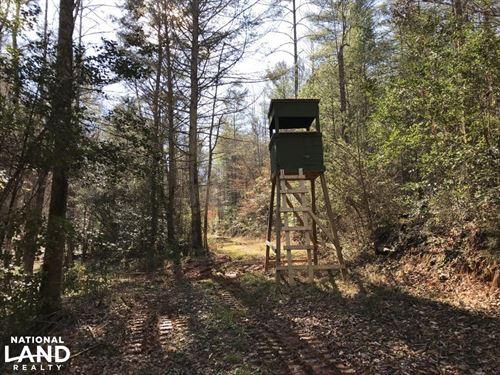 Johns River Road Timberland And Rec : Morganton : Burke County : North Carolina