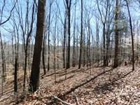 38 Acres Near Russellville, Alaba : Russellville : Franklin County : Alabama
