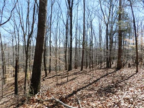 38 Acres Near Russellville, Alaba : Russellville : Franklin County : Alabama
