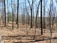 16.25 Acres Near Russellville, Ala : Russellville : Franklin County : Alabama