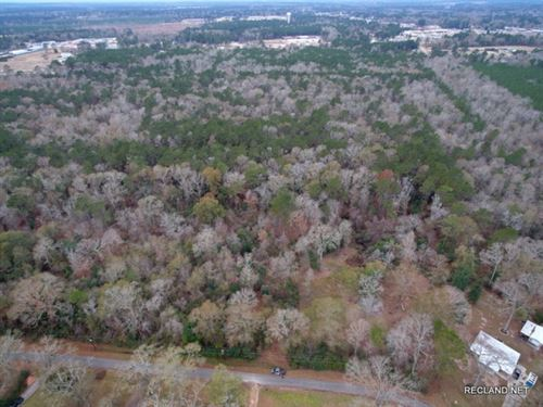 20.8 Ac, Wooded Home Site Tract In : Jasper : Texas
