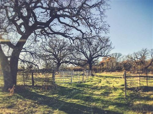98 Acres in Rising Star, TX : Rising Star : Eastland County : Texas