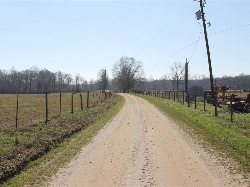 205+/- Acres Creekside Farm : Bowdon : Carroll County : Georgia
