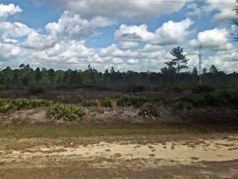 Polk County, Fl $18,000 Neg : River Ranch : Polk County : Florida