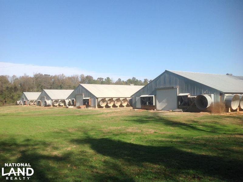 Turn-Key Poultry Farm : Saint Matthews : Calhoun County : South Carolina