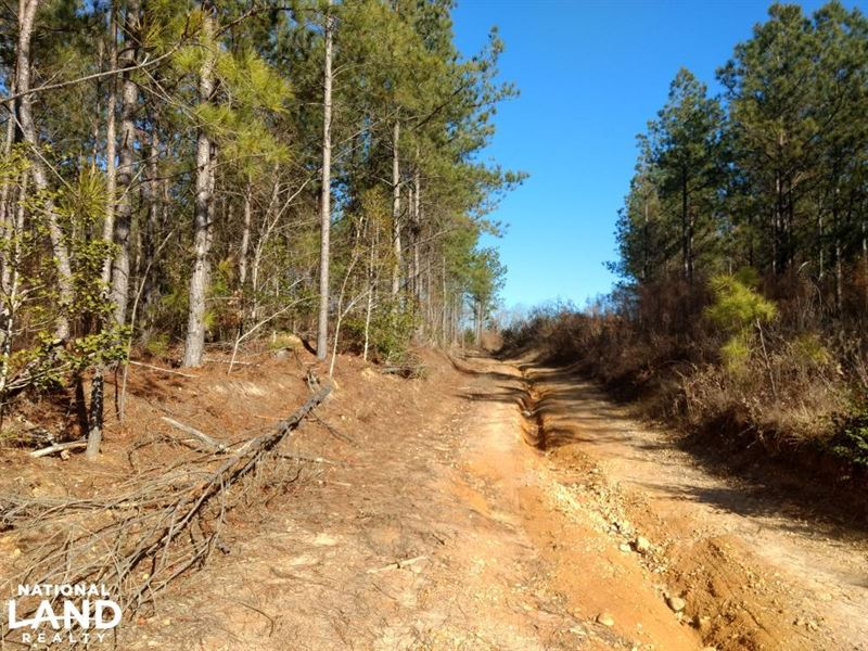 Farm/Development OR Timber Tract : Broadway : Harnett County : North Carolina
