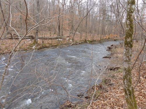 Private Tract W/ Rock Bottom Creek : Waynesboro : Wayne County : Tennessee
