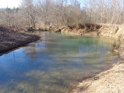 Great Tract W/ Year Round Creek : Savannah : Hardin County : Tennessee