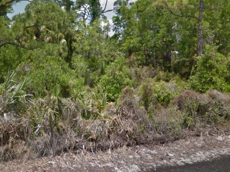 Martin County, Fl $1.2 Million : Hobe Sound : Martin County : Florida