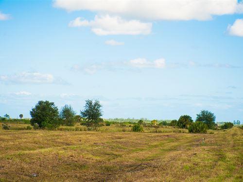 McDonnell 38 Acres : Vero Beach : Indian River County : Florida