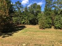Aiken Tract With Pond : Crawfordville : Taliaferro County : Georgia