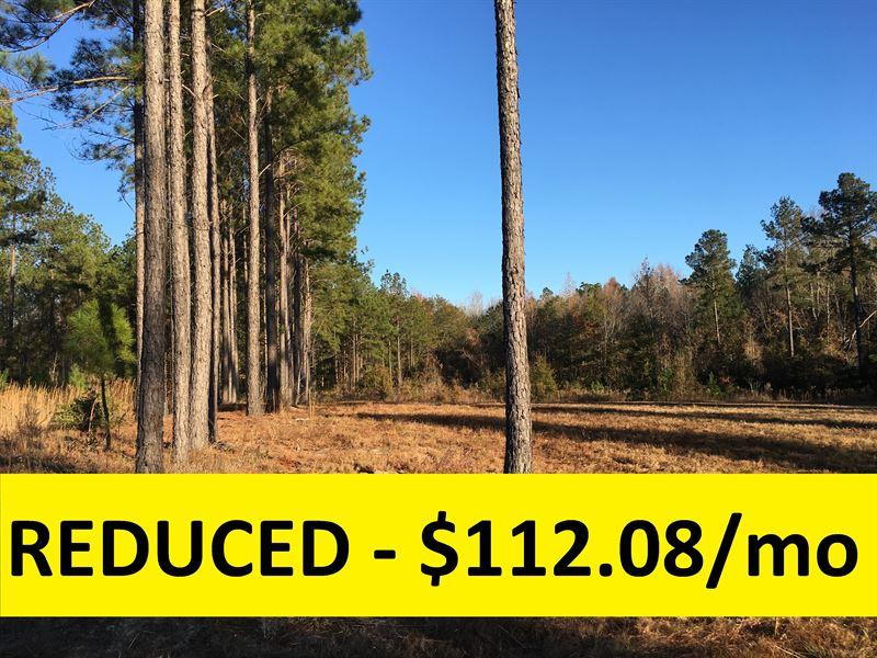 Owner Financed Private Lot : Kite : Johnson County : Georgia