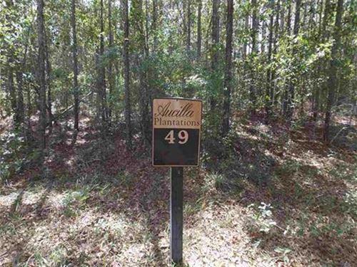 SW Oregon Trail, Greenville, FL : Greenville : Madison County : Florida