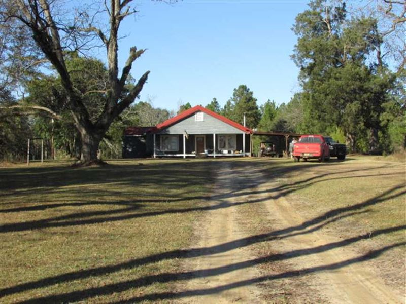 60 Acres With Home : Camilla : Mitchell County : Georgia