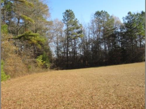 13.5 Acres In Lafayette County : Paris : Lafayette County : Mississippi