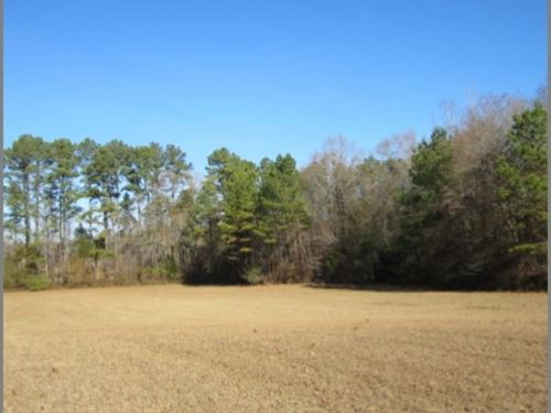 38.4 Acres In Lafayette County : Paris : Lafayette County : Mississippi