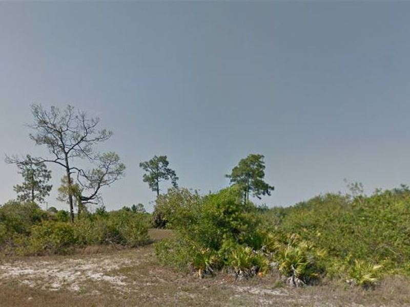 Lee County, Fl $65,000 Neg : Cape Coral : Lee County : Florida