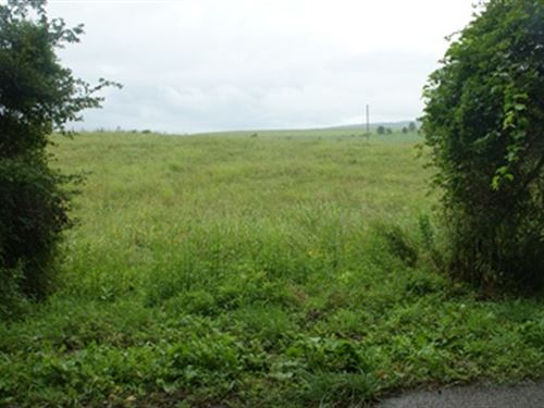 Residential Building Lot, Owner Fin : Ivanhoe : Wythe County : Virginia