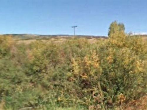 Routt County, Co $12,000 Neg : Oak Creek : Routt County : Colorado