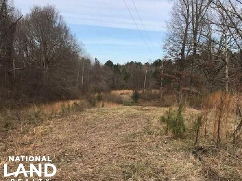 10-Acre Wooded Tract : Byhalia : Desoto County : Mississippi