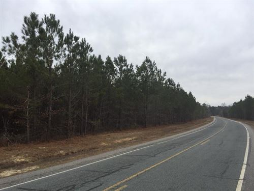 81 Acres With Tons Of Road Frontage : Linden : Cumberland County : North Carolina