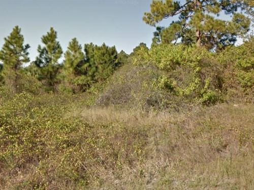 Lee County, Fl $5,000 Neg : Lehigh Acres : Lee County : Florida