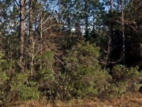 Saint Johns County, Fl $18,000 Neg : Hastings : Saint Johns County : Florida