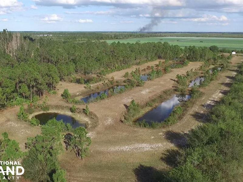 10 Acre Fish Farm Charlotte County Land For Sale Punta