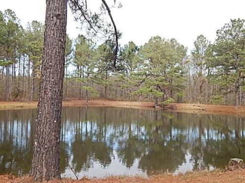 109.5 Acres In Rankin County At Spr : Johns : Rankin County : Mississippi