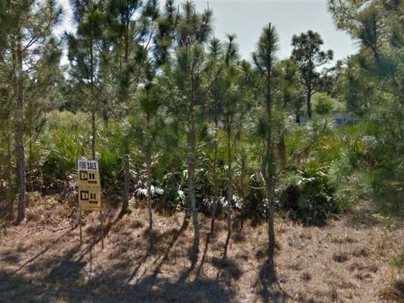 Brevard County, Fl $26,500 Neg : Palm Bay : Brevard County : Florida