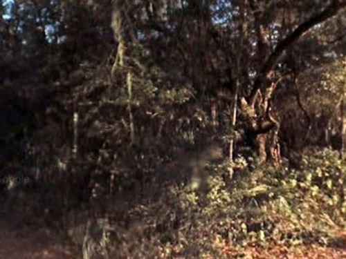 Putnam County, Fl $60,000 Neg : Pomona Park : Putnam County : Florida
