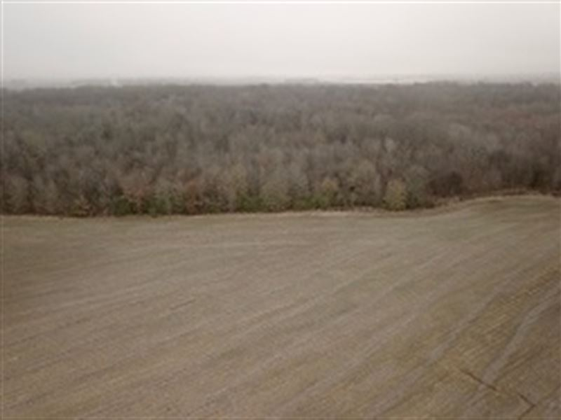 Sly/Gates 163 +/- Acres : Moro : Lee County : Arkansas