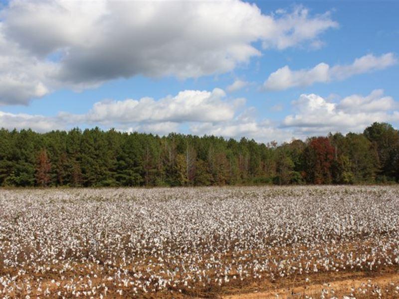 Wetumpka, Al Hwy 111 Frontage : Wetumpka : Elmore County : Alabama