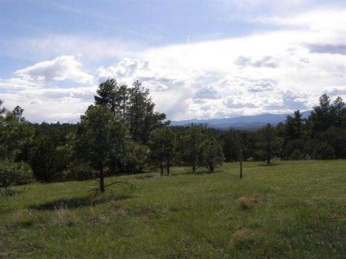 Apishapa River Ranch 180 : Gulnare : Las Animas County : Colorado