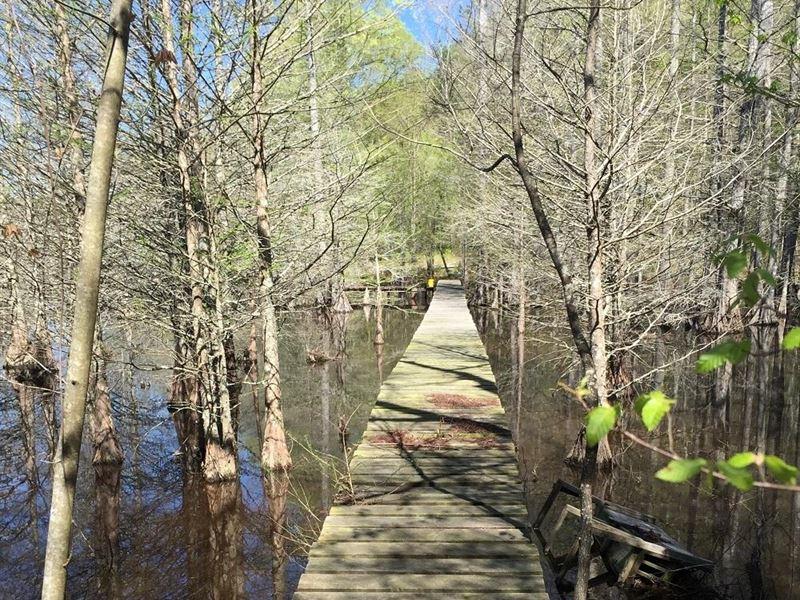 Hashuqua Creek Investment : Macon : Noxubee County : Mississippi