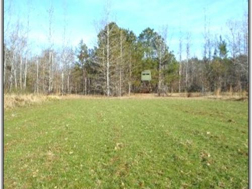 122 Acres In Montgomery County : Vaiden : Montgomery County : Mississippi