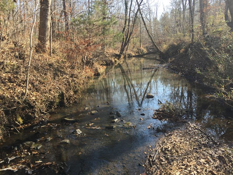 Cooter Creek Tract : Elberton : Elbert County : Georgia