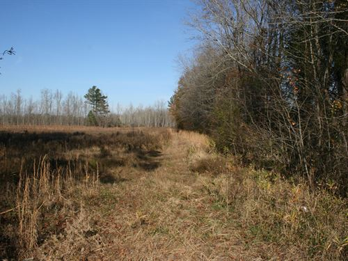 64.09 Acres in Enfield, NC : Enfield : Halifax County : North Carolina