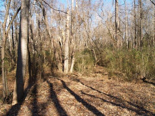 N. Highway 101, Greer, Sc : Greer : Greenville County : South Carolina