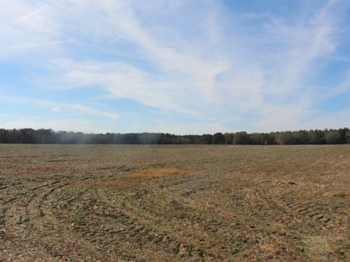 Hunt, Grow Timber, Farm Income : Cordele : Crisp County : Georgia